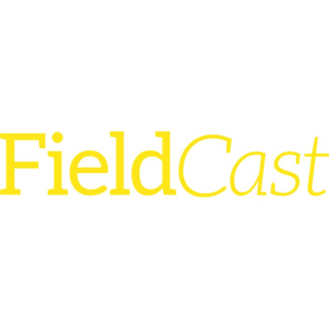 Fieldcast 2Core Single Mode Hybrid Coupler Cable